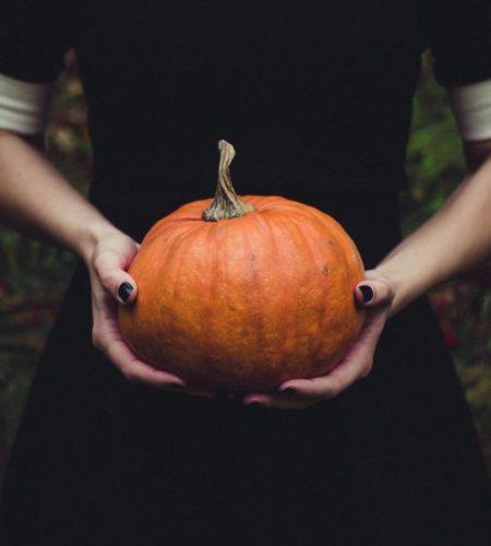 Herbst-Knaller: elegantes Dessert für kalte Abende